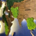 Дерев'яна мапа світу з стабілізованим мохом та LED підсвічуванням (Moss)