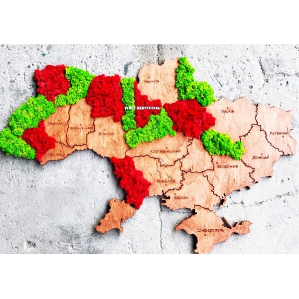 Мапа України на стіну з дерева та стабілізованого моху